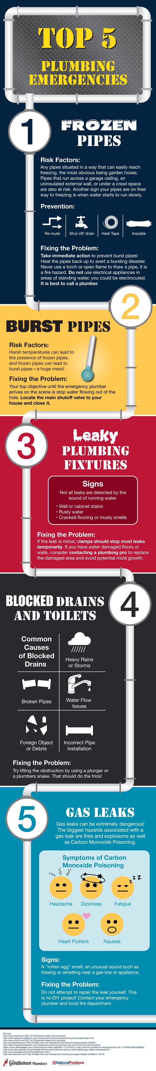 Infographic showing the top 5 plumbing emergencies